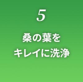 5.桑の葉をキレイに洗浄