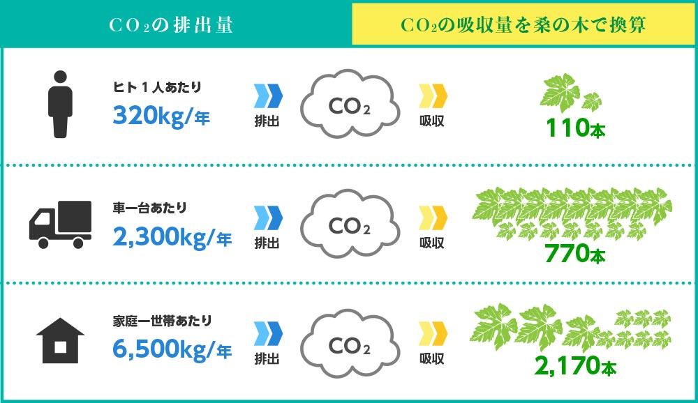 CO2の吸収量を桑の葉で換算